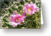 Tucson Arizona Digital Art Greeting Cards - Pink Twins Greeting Card by Lenore Kadish