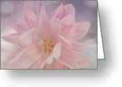 Floral Print Greeting Cards - Pink Whisper Greeting Card by Bonnie Bruno