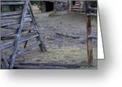 Old Cabins Photo Greeting Cards - Pioneer Cabins Greeting Card by Leland Howard