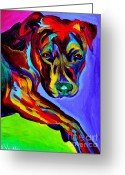 Bull Terrier Greeting Cards - Pit Bull - Gaze Greeting Card by Alicia VanNoy Call