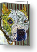 David Greeting Cards - Pit Bull Portent Greeting Card by David  Hearn