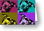 Pitbull Greeting Cards - Pit Face Greeting Card by Dean Russo