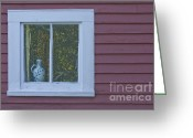 Pitcher Greeting Cards - Pitcher in window Greeting Card by Jim Wright