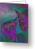 Warm Looking Flower Greeting Cards - Pixie Spring Fantasy Greeting Card by Debra     Vatalaro