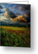 Natural Light Greeting Cards - Places in the Heart Greeting Card by Phil Koch