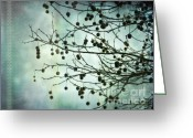 Seeds Pyrography Greeting Cards - Plane Beauty - London Plane Tree Greeting Card by Jay Taylor