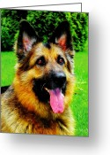 German Shepard Digital Art Greeting Cards - Play with Me Greeting Card by Mariola Bitner