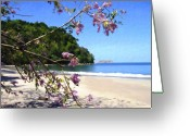 Playa Greeting Cards - Playa Espadillia Sur Manuel Antonio National Park Costa Rica Greeting Card by Kurt Van Wagner