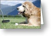 Golf Green Greeting Cards - Playing golf with a dog Greeting Card by Mats Silvan
