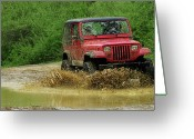Puddle Photo Greeting Cards - Playing in the Mud Greeting Card by Scott Hovind