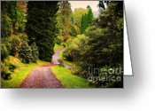Barks Greeting Cards - Pleasant Path. Benmore Botanical Garden. Scotland Greeting Card by Jenny Rainbow