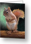 Featured Drawings Greeting Cards - Please Greeting Card by Brent Ander