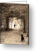 Loss Digital Art Greeting Cards - Please Come Back  Greeting Card by Cathy  Beharriell