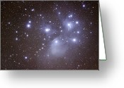 Glowing Star Greeting Cards - Pleides Greeting Card by Pat Gaines