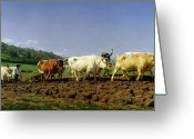 Livestock Painting Greeting Cards - Ploughing in Nivernais Greeting Card by Rosa Bonheur