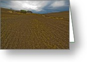 Farm Fields Greeting Cards - Plowed Palouse Greeting Card by Dale Stillman