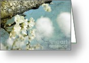 Puffy Greeting Cards - Plum blossoms and puffy clouds Greeting Card by Cindy Garber Iverson