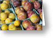 Pitted Greeting Cards - Plums Greeting Card by John Greim