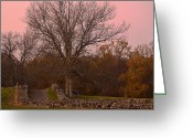 Landscape Photograpy Greeting Cards - Pocantico Trail Novemer Dusk Greeting Card by Bedford Shore Photography