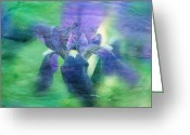Flower Greeting Card Greeting Cards - Poetic Iris 2 Greeting Card by Toni Hopper