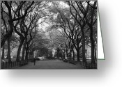 Central Park Greeting Cards - Poets Walk In Central Park Greeting Card by Christopher Kirby