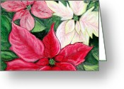 Flowers Pastels Greeting Cards - Poinsettia Pastel Greeting Card by Nancy Mueller