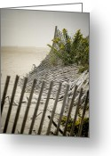 Sand Fences Photo Greeting Cards - Point Pleasant Beach Greeting Card by Heather Applegate