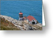 Light Houses Greeting Cards - Point Reyes Lighthouse in California 7D15980 Greeting Card by Wingsdomain Art and Photography