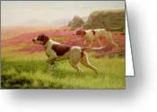 Trailing Greeting Cards - Pointers in a Landscape Greeting Card by Harrington Bird
