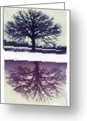 Missouri Photographer Greeting Cards - Polaroid Transfer Tree Greeting Card by Jane Linders
