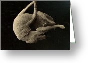 Artifact Greeting Cards - Pompeii: Plaster Cast Greeting Card by Granger