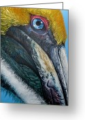 Jon Ferrentino Greeting Cards - Pompous Pelican Greeting Card by Jon Ferrentino