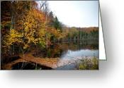 Folage Greeting Cards - Pond on Limekiln Road II Greeting Card by David Patterson