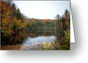 Folage Greeting Cards - Pond on Limekiln Road in Inlet New York Greeting Card by David Patterson