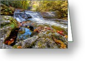 Skyway Greeting Cards - Pool Reflections Greeting Card by Debra and Dave Vanderlaan