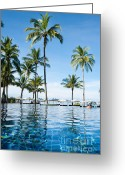 Coconut Greeting Cards - Poolside Greeting Card by Atiketta Sangasaeng