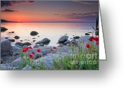 Sea Flowers Greeting Cards - Poppies By the Sea Greeting Card by Evgeni Dinev