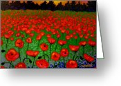 Sky Studio Greeting Cards - Poppy Carpet  Greeting Card by John  Nolan