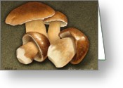 Earth Tones Greeting Cards - Porcini Mushrooms Greeting Card by Marshall Robinson