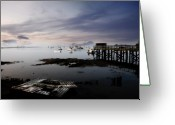 New England Digital Art Greeting Cards - Porpoise Dock Greeting Card by William Carroll