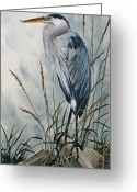 Wildlife Greeting Cards Prints Painting Greeting Cards - Portrait in the Wild Greeting Card by James Williamson