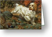 Spaniels Greeting Cards - Portrait Of A Clumber Spaniel Hunting Greeting Card by Walter A. Weber