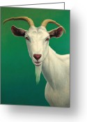 Green Painting Greeting Cards - Portrait of a Goat Greeting Card by James W Johnson