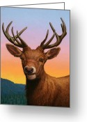 Horns Painting Greeting Cards - Portrait of a Red Deer Greeting Card by James W Johnson