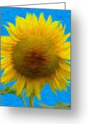 Blossoms Greeting Cards - Portrait of a Sunflower Greeting Card by Jeff Kolker