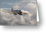 Military Aircraft Greeting Cards - Portrait of an Icon Greeting Card by Pat Speirs