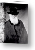 Male Greeting Cards - Portrait of Charles Darwin Greeting Card by Julia Margaret Cameron