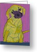 David Greeting Cards - Portrait of Isabella The Puggle Greeting Card by David  Hearn