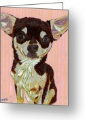 Chihuahua Greeting Cards - Portrait of Little Jojo Greeting Card by David  Hearn