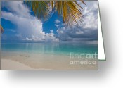 Best Seller Greeting Cards - Postcard Perfection. Maldives Greeting Card by Jenny Rainbow